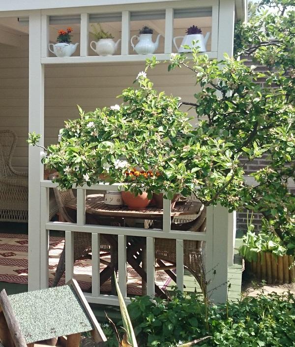 veranda-bouwen-castricum